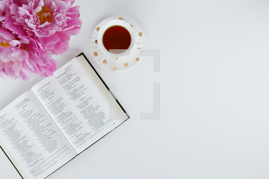 pink flowers, open Bible, and tea cup