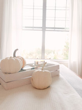 light from a window and white pumpkins