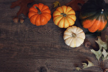 Fall Thanksgiving Holiday Season Background with Pumpkins, Leaves and Acorn Squash Over Wood