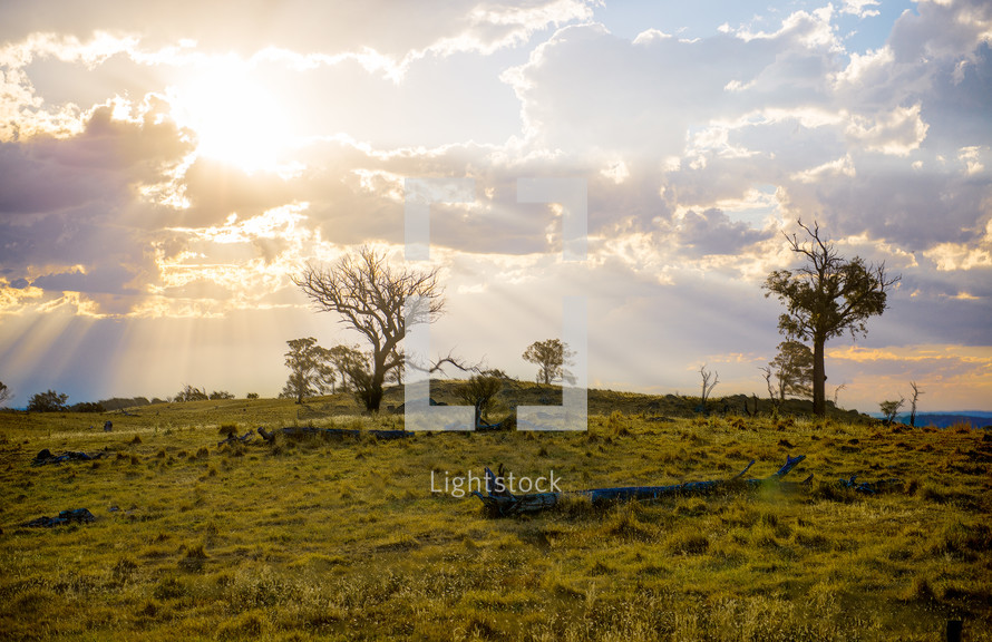 Sun beaming through the clouds over a grassy hill with trees.