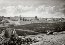 Temple Mount from south slope of the Mount of Olives.