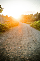 Dirt road with trees and bushes lining it, a sunrise in the distance