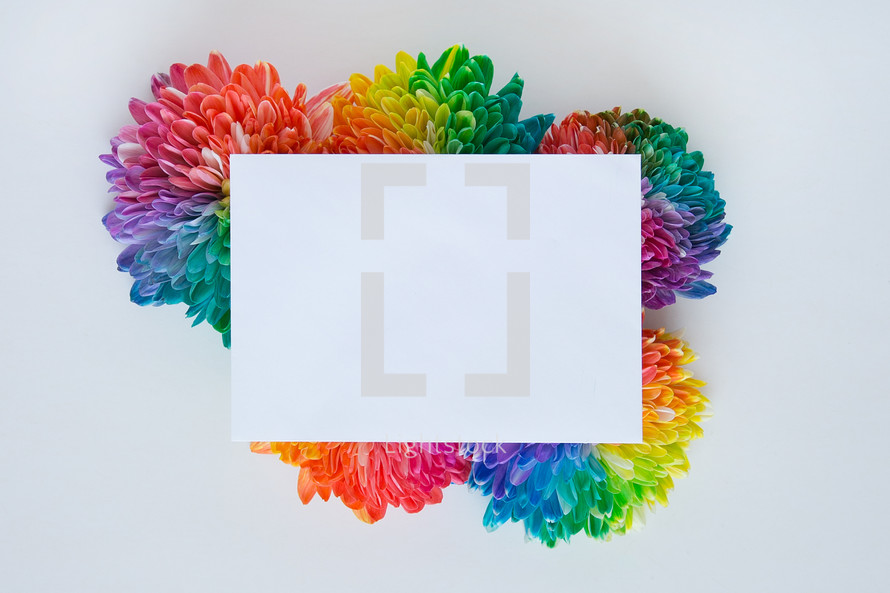 rainbow flowers with white notecard