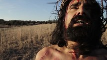 Jesus's face in agony at crucifixion