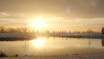 ducks on a lake at sunset