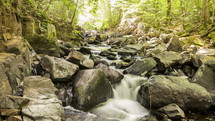 stream in Algonquin Provincial Park - Canada