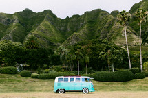a Volkswagen van parked in front of green cliffs and palm trees