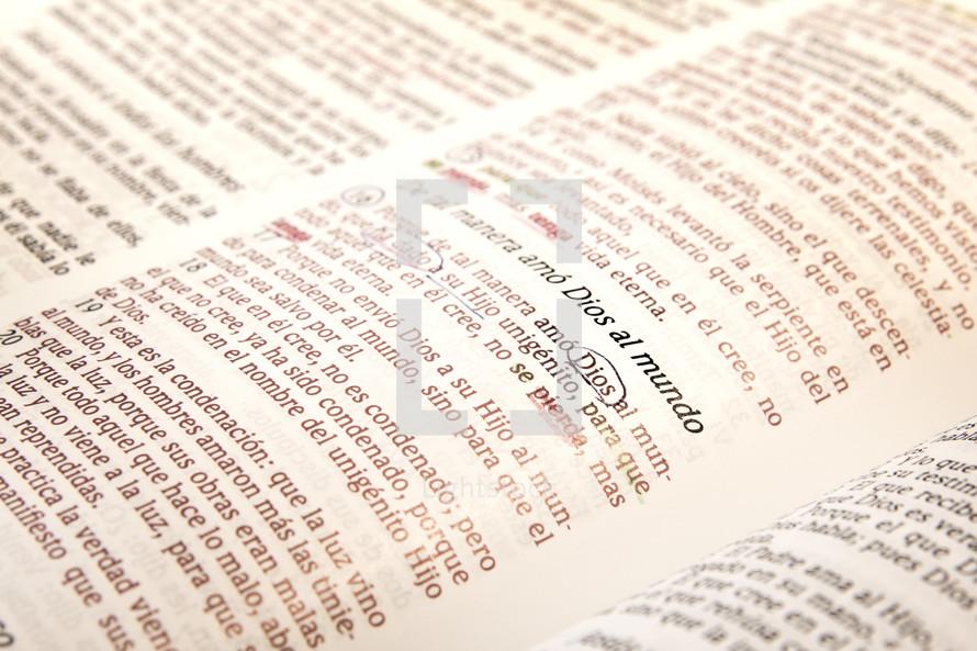 spanish graduation Bible verse