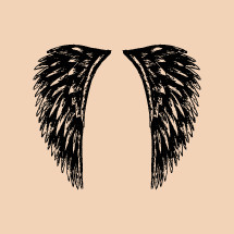 hand drawn wings.