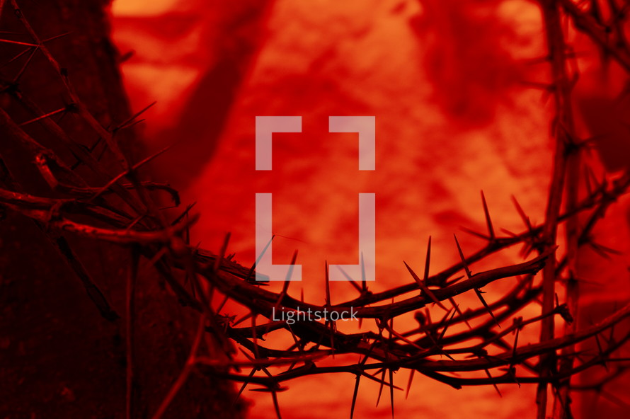 blood red crown of thorns up close with old wooden beam on cloth