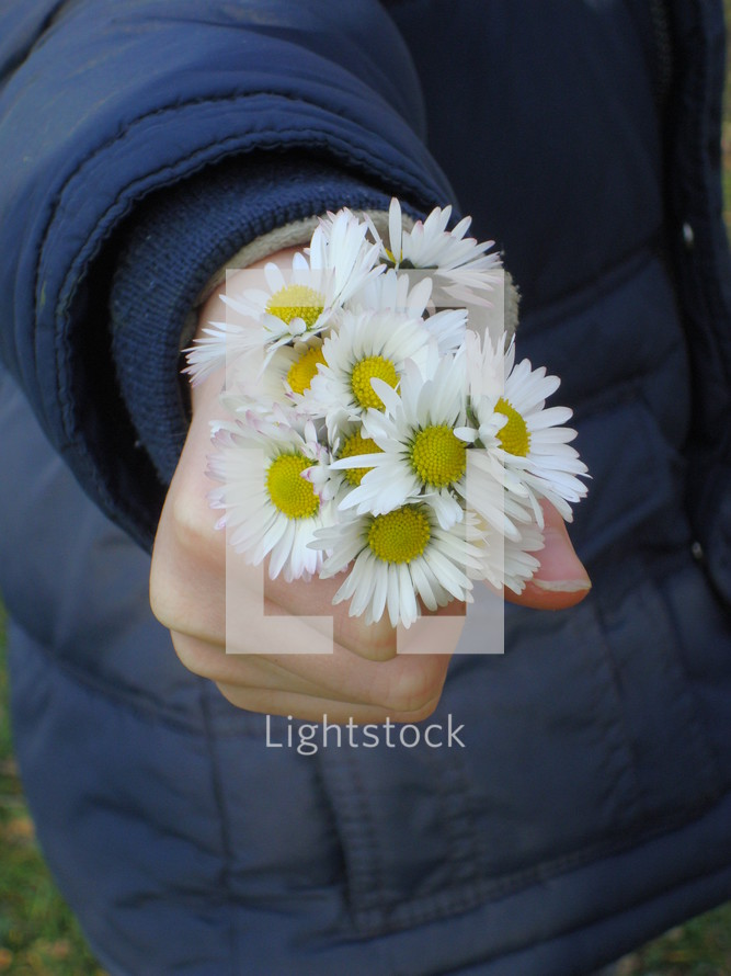 A handful of flowers.