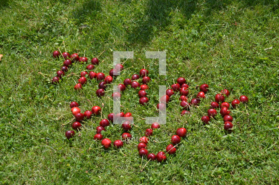 Thank You written with cherries in the grass