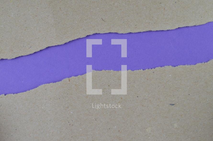purple under torn paper
