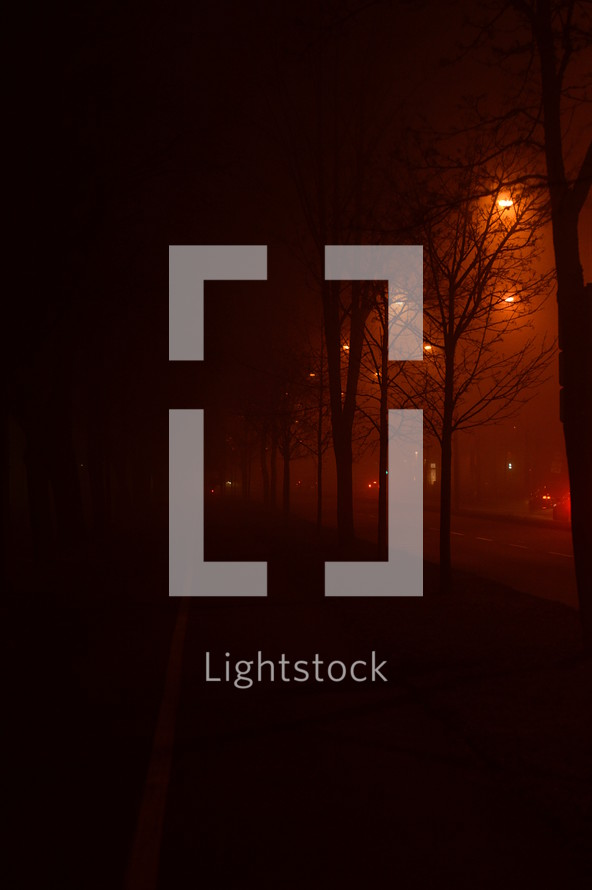 street lights on a foggy street at night