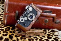 vingage camera and luggage on leopard spots