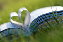 Book pages forming a heart in the grass.