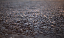Ground covered in small rocks.