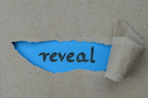 ripped open paper with the word REVEAL