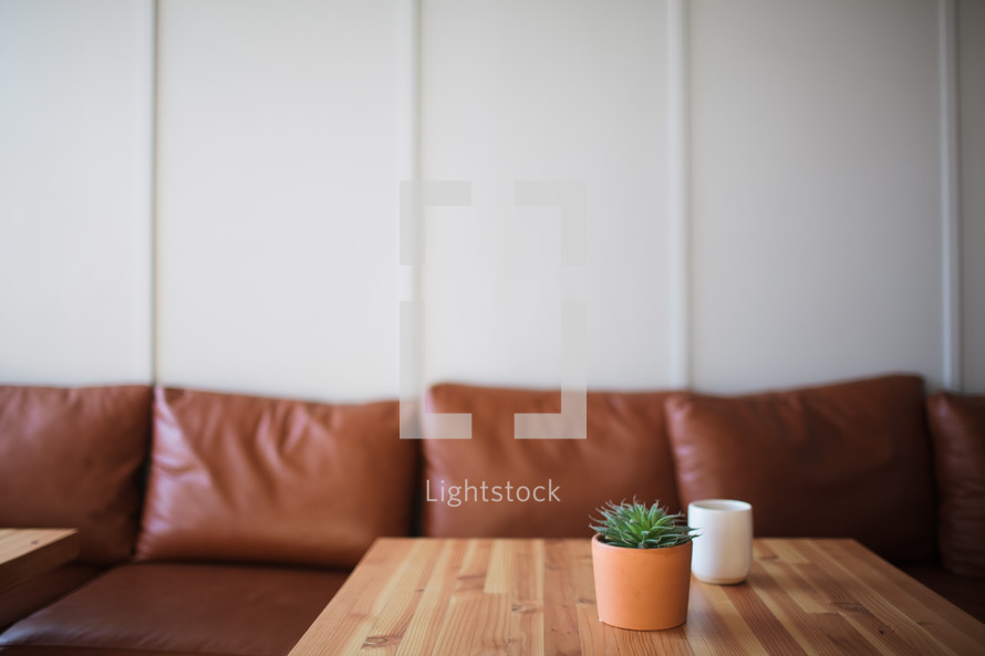 succulent plant and coffee cup on a table