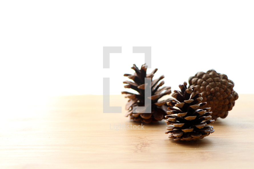 pine cones on a wood background