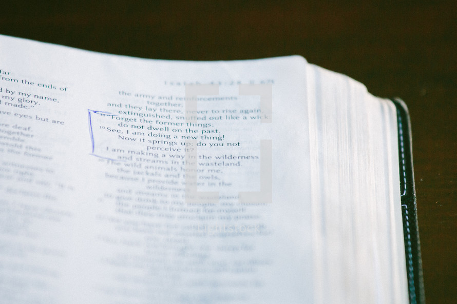 marked pages of the Bible, Isaiah 43:19