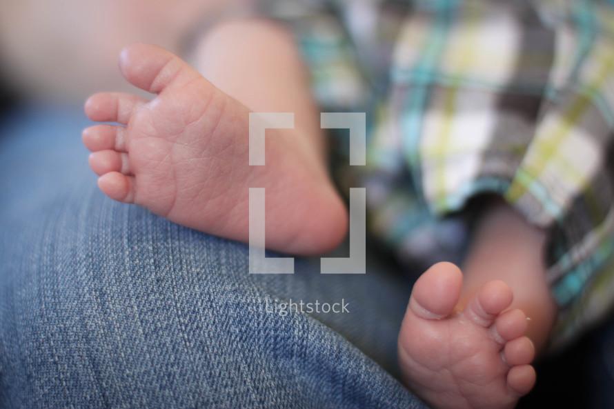 newborn baby boy feet sitting on mom s lap photo by angela