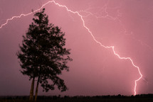 lightning strike over a tree