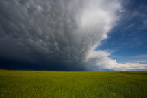 Storm clouds over grass field