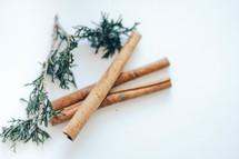 evergreen greenery branch and cinnamon sticks
