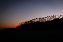 silhouette of dunes at sunset