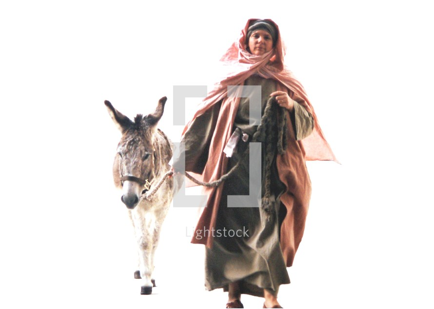 """A Hebrew Israelite woman leads a Donkey on a rope to give to Jesus and His disciples for Jesus to ride into Jerusalem during the time of Passover.  When Jesus entered into Jerusalem riding on a Donkey,  people greeted Him by throwing their clothes and palm branches onto the ground shouting Hosanna, Hossana to the highest. A Donkey was prepared to give to the Disciples to give to Jesus to ride into Jerusalem during the week of Passover. Here, an Israelite woman brings her Donkey to Jesus and His disciples, dressed in Hebrew clothing.    """"Tell the daughter of Zion, 'Behold, your King is coming to you, Lowly, and sitting on a donkey, A colt, the foal of a donkey' """". - Matthew 21:5"""