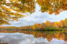 colorful fall forest around a lake
