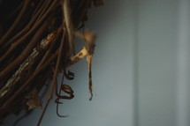 twigs in a nest