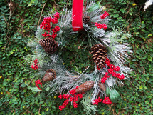 A red ribbon holding a Christmas wreath made out of evergreen, bluespruce, pine tag needles, pine cones, red berries mounted and framed against a wall of green plants.