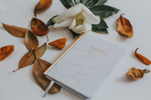 magnolia flower and notebook