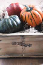 crate of fall pumpkins