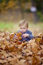 toddler boy sitting pile of fall leaves