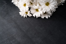 white daisies on black