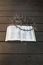 Hebrew / English Bible with Crown of thorns. Book of Isaiah