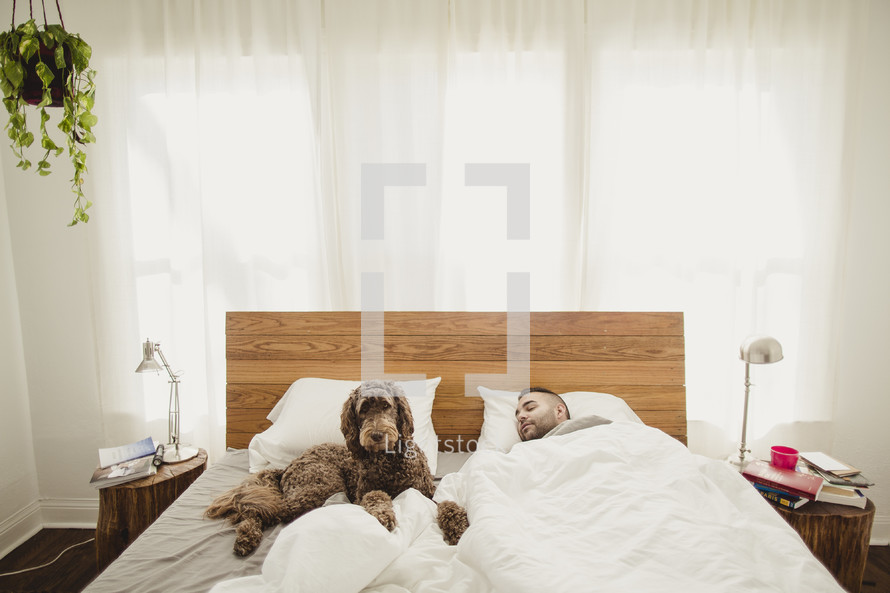 Man sleeping in bed with dog.
