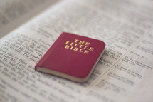 The Little Bible on the pages of a Bible