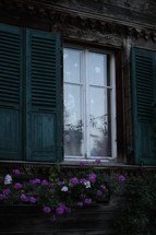 Cottage window and shutters with flowers growing in a planter box.