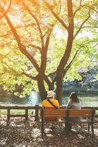 a couple sitting on a bench under a tree by a pond in a park