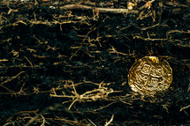 gold coin in dirt
