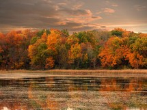 autumn trees around a lake shore at sunset