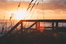Ocean sunset and sea oats
