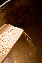 pouring grains