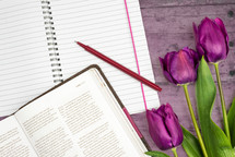 notebook, open notebook, pen, open Bible, Bible, tulips, spring, Bible study
