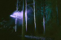 lights shining on a cross in a forest