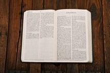 Scripture Titles - Exodus